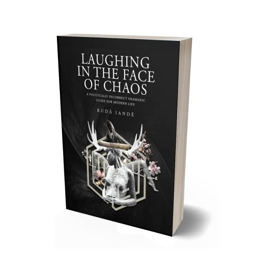 laughing in the face of chaos ebook cover (1)